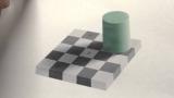 The Checker Board Illusion
