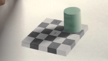 The Checker Board Illusion