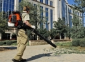 Top 10 Best Backpack Leaf Blowers of 2019 – Reviews