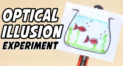 Optical Illusion Science Project Ideas