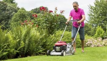 Top 10 Best Push Lawn Mowers of 2020 – Reviews